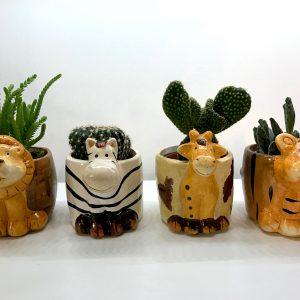 cache-pot animaux